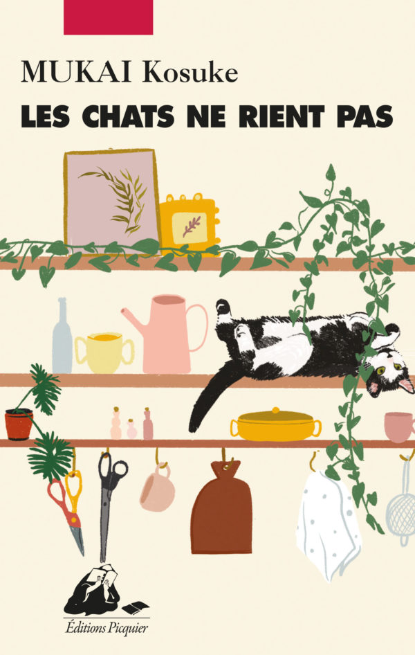 Chats ne rient pas
